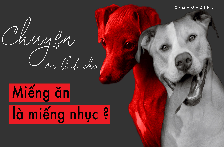 Chuyện ăn thịt chó: Khi miếng ăn là miếng nhục