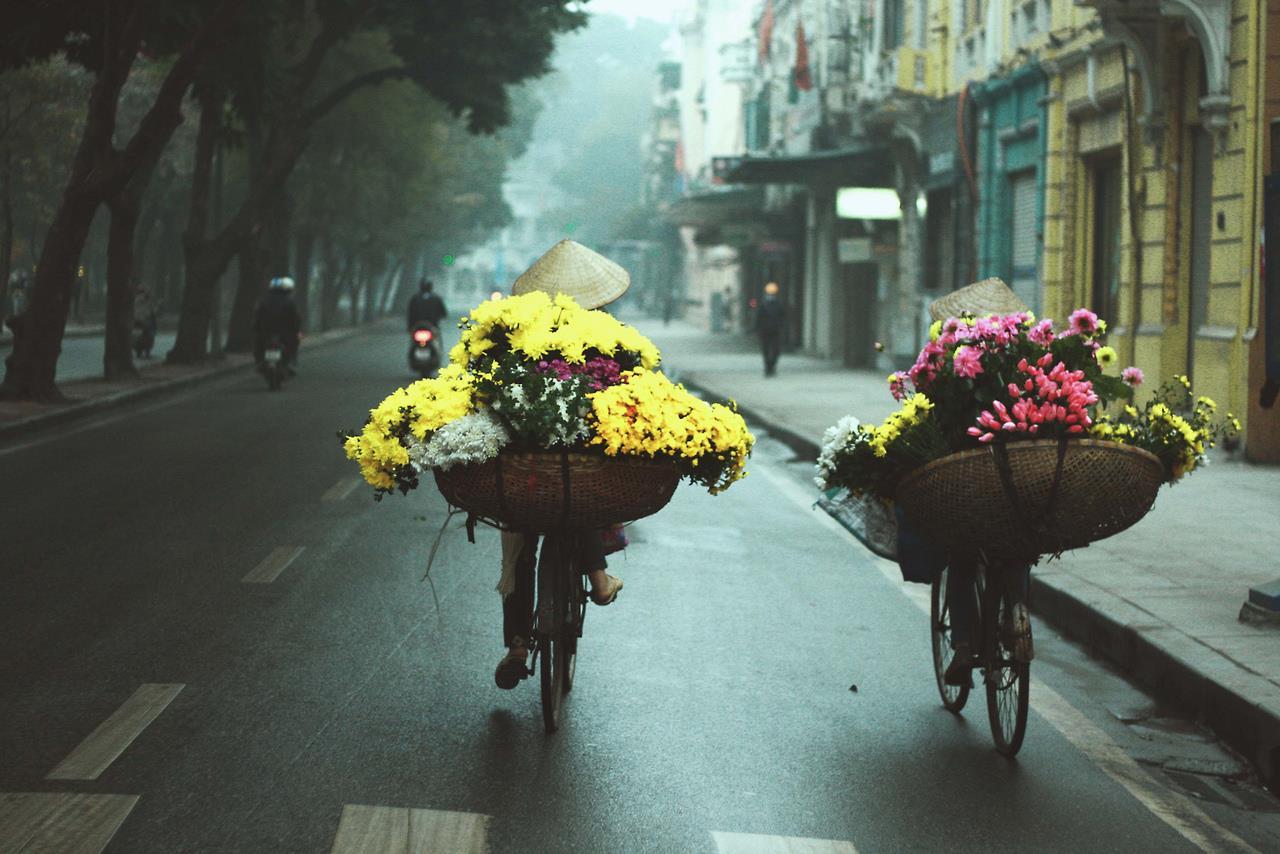 """Tháng 11, Hà Nội có những con đường hoa đẹp đến mức không chụp hình chỉ có """"tiếc cả thanh xuân"""""""