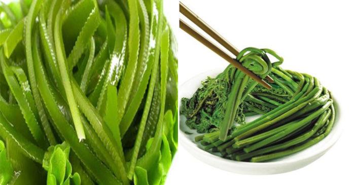 """4 loại rau """"trường thọ"""", quí hơn cả """"nhân sâm"""" Trung Hoa, Hàn Quốc mà mọc rất nhiều tại Việt Nam"""