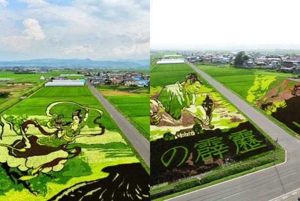Du khách mê mẩn ngắm những nhân vật hoạt hình tuyệt đẹp trên những cánh đồng lúa ở Nhật Bản