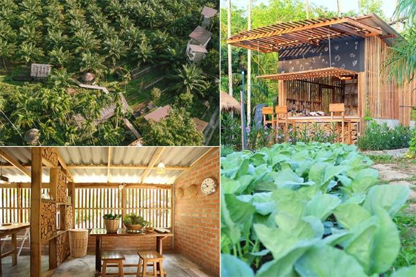 Giật mình khi phát hiện resort đẹp nhức nhối tọa lạc giữa...vườn rau ngay sát xịt Việt Nam