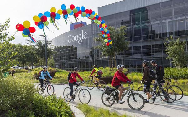Không cần bằng đại học cũng có thể vào làm việc ở những tập đoàn lớn như Google hay Apple