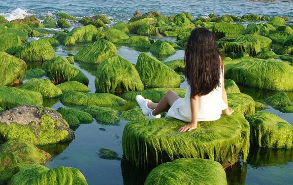 """Tim đập """"thình thịch"""" trước thiên đường rêu xanh đẹp nhất Việt Nam"""