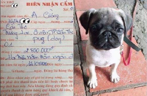 """""""Lão Hạc"""" mùa World Cup: Hết tiền đến chú chó cưng cũng đem đi cầm cố?"""