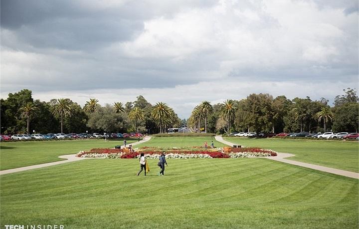 Toàn cảnh Đại học Stanford - Trường đại học có điểm tuyển cao nhất nhì nước Mỹ