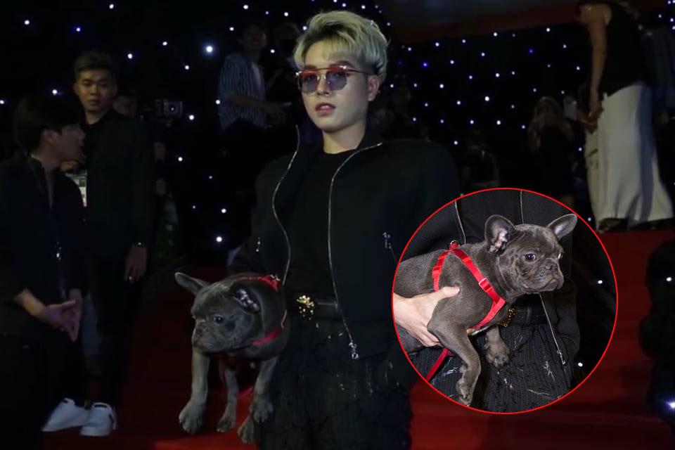 """Lừa mượn được thú cưng của Hòa Minzy đi dự VIFW, Đức Phúc """"lật mặt"""" thản nhiên chê chó hôi giữa sự kiện"""
