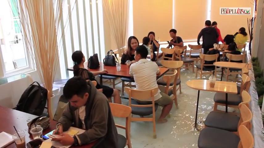 Phát hiện mới quán cà phê có 1-0-2 cá lội dưới chân đầu tiên tại Sài Gòn
