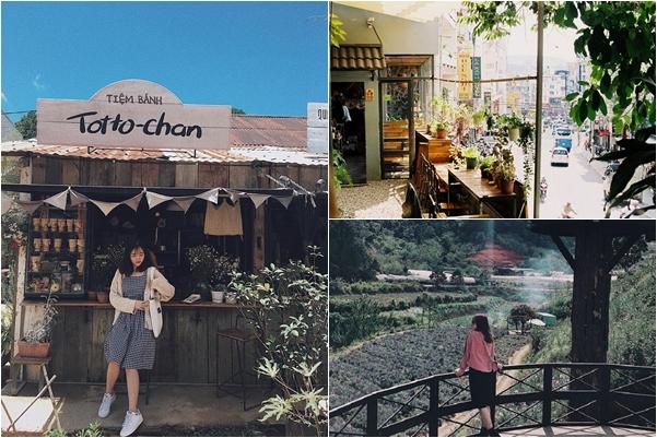 """Gom gấp TOP 10 quán cafe đẹp """"rụng rời"""" nhất định phải ghé một lần khi tới Đà Lạt"""