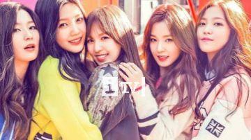 Hóng: Rộ tin Red Velvet, NCT, Taeyeon (SNSD) sẽ đến Việt Nam