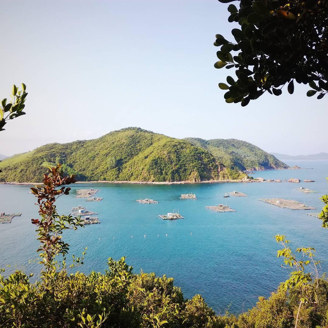 """Khám phá Vịnh Xuân Đài – vịnh biển đẹp đến nao lòng ở xứ sở """"hoa vàng cỏ xanh"""" ít người biết đến"""