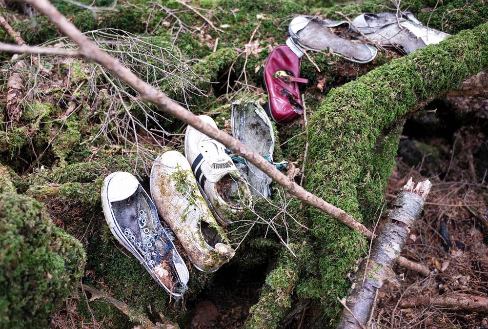 Aokigahara - khu rừng nổi tiếng Nhật Bản khiến bất cứ ai cũng phải sởn gai ốc